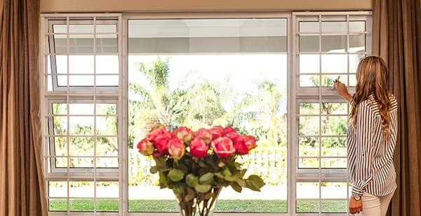 Cottage Guard Windows