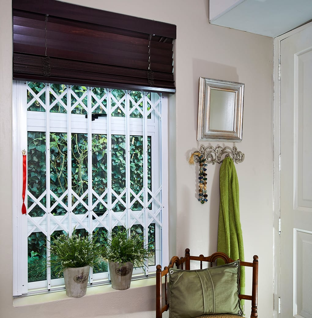 Trellidor Retractable Windows