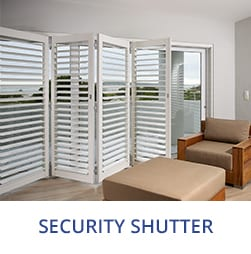 securty shutter image
